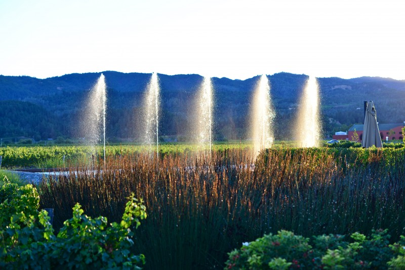 Alpha Omega Winery fountains Napa