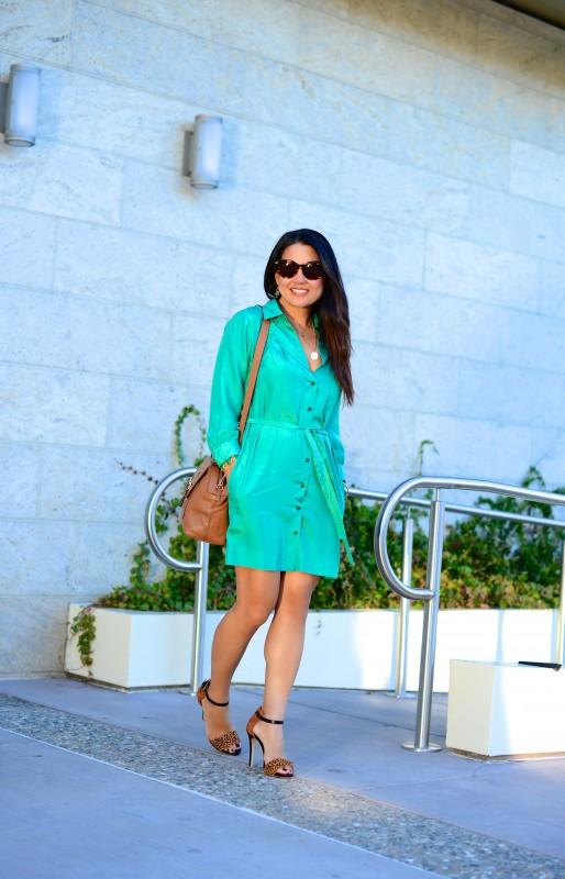 Polished chic shirtdress and cognac accessories